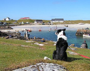 Isle of Tiree - Scarinish Harbour