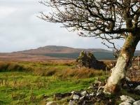 islay-near-loch-finlaggan.jpg