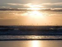 islay-sunset-and-seagulls.jpg