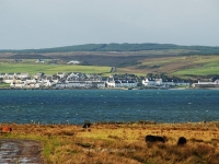 port-charlotte-from-across-loch-indaal.jpg