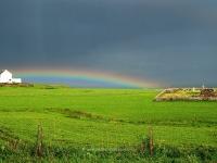 rainbow-nerabus.jpg