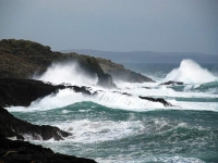 waves-port-wemyss.jpg
