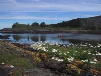 salen-bay-lismore.jpg